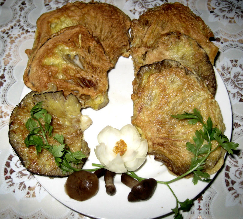 Блюда с вешенкой рецепт
