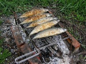 Как запечь рыбу на мангале