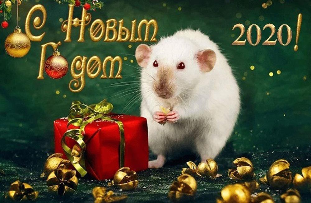 Поздравляем С Новым 2020 годом !!!