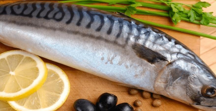 Рецепты из скумбрии